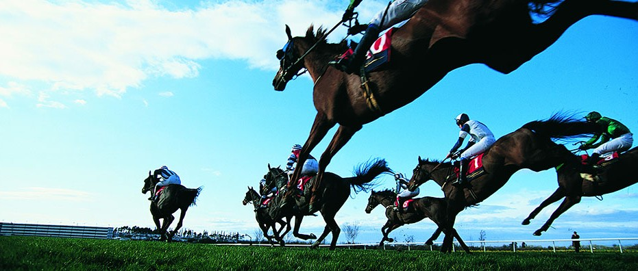 Horse Betting - Everything You Need to Know